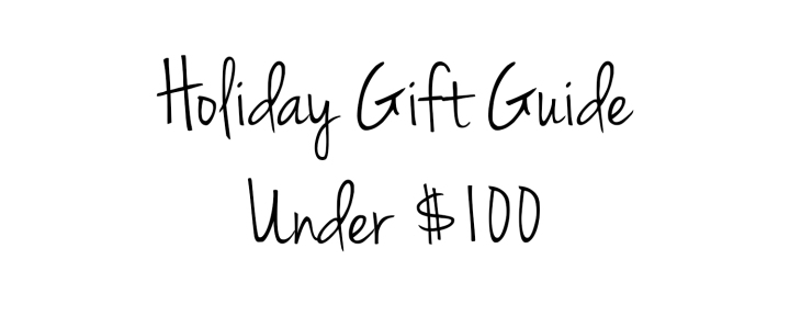 Holiday Gift Guide under 100 title
